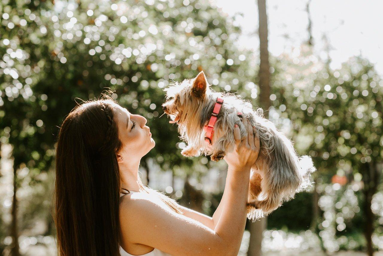 fotógrafos de mascotas en girona